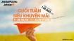 Jetstar ồ ạt mở bán vé máy bay giá rẻ chỉ từ 149.000 đồng
