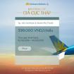 Vietnam Airlines chắp cánh những hành trình bằng loạt vé máy bay giá CỰC RẺ