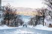 Bụi kim cương huyền ảo ở nơi lạnh nhất Nhật Bản