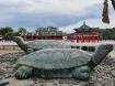 Kinh Nghiệm Du Lịch Đảo Kusu, Hòn Đảo Nổi Tiếng Linh Thiêng Hiếm Người Biết Ở Singapore