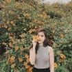 Đến Đà Lạt tháng 10 đừng quên mùa hoa dã quỳ rực rỡ