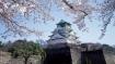 Là điểm đến du lịch hàng đầu châu Á, Osaka Nhật Bản chứa đựng vô vàn điều thú vị mà du khách lần đầu đặt chân đến không nên bỏ qua