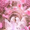 Con đường hoa ảo diệu ở Singapore được các travel blogger lăng xê nhiệt tình thực chất là một cái... nghĩa trang!