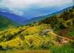 Tháng 9, check-in mùa vàng tại 7 vùng đất lúa chín nổi tiếng